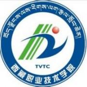 西藏万博manbetx官网手机版下载技术学院